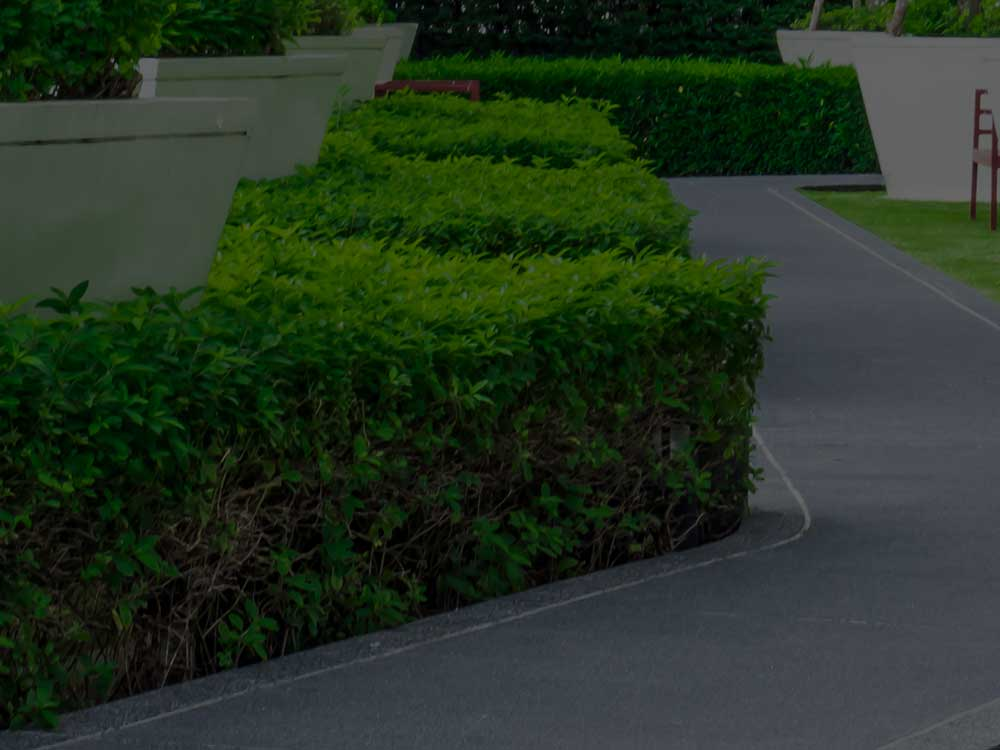 Columbus Commercial Landscaping