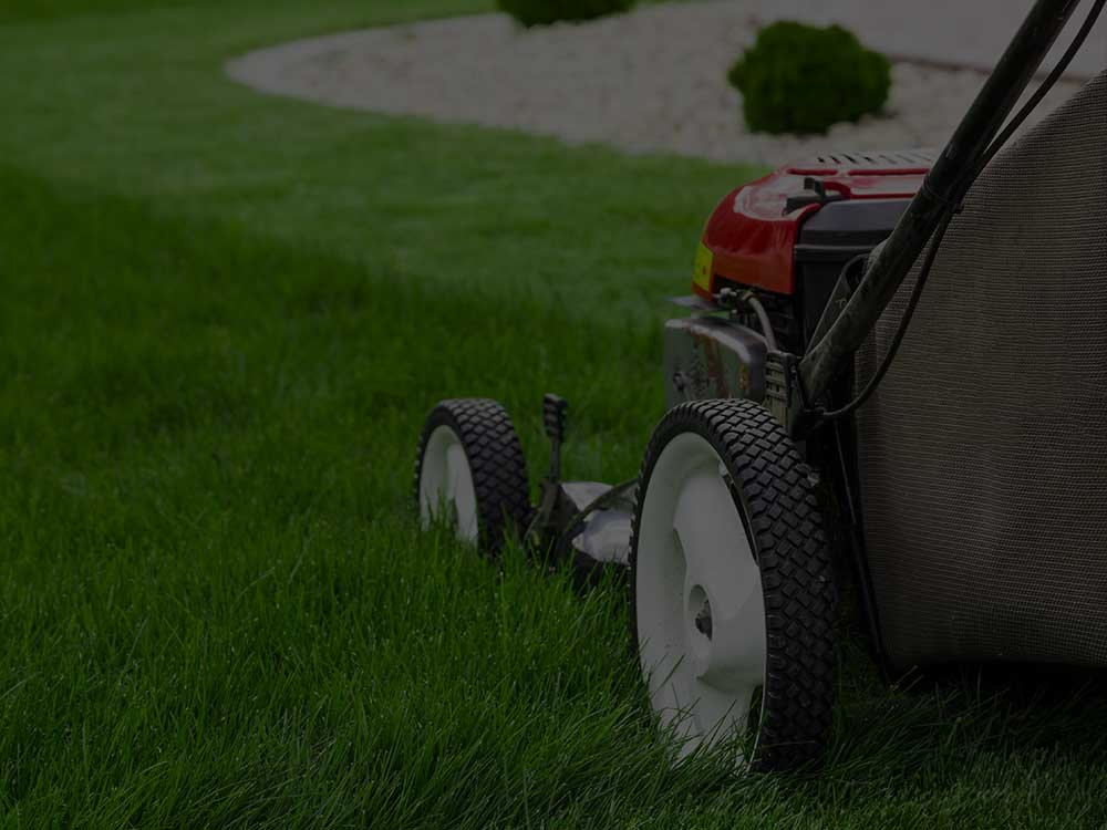 Columbus Lawn Mowing